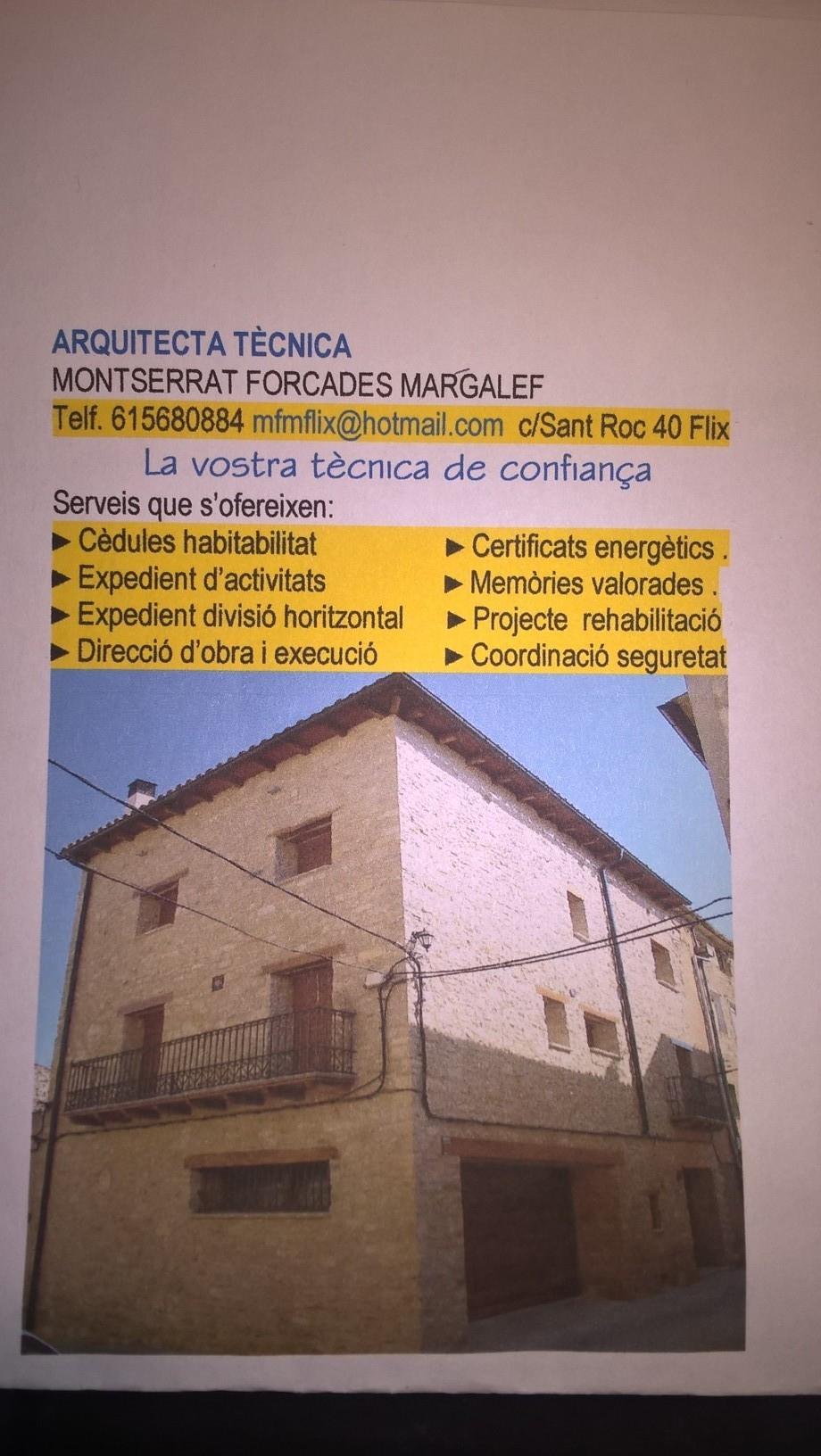 Montserrat Forcades Margalef